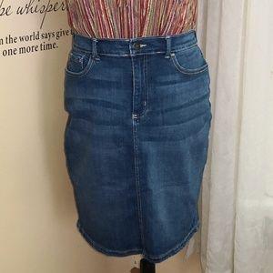 LEE Modern Series Denim Jean Skirt